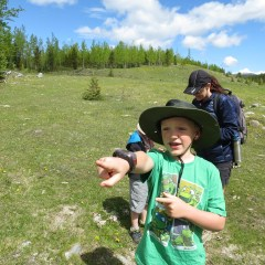 Rainy Creek Summit – Hiking With Kids – Kananaskis