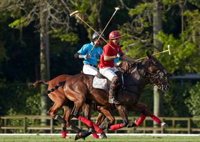Singapore polo open Tata vs Pru 324 social media size
