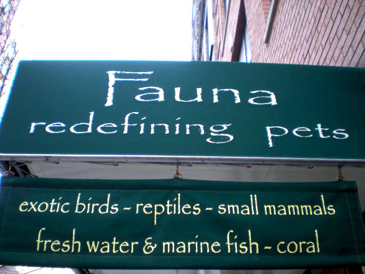fauna-storefront1