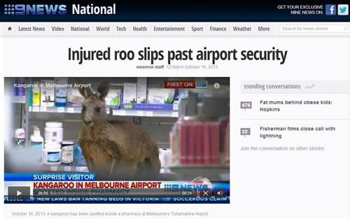 kangaroo_security_1013