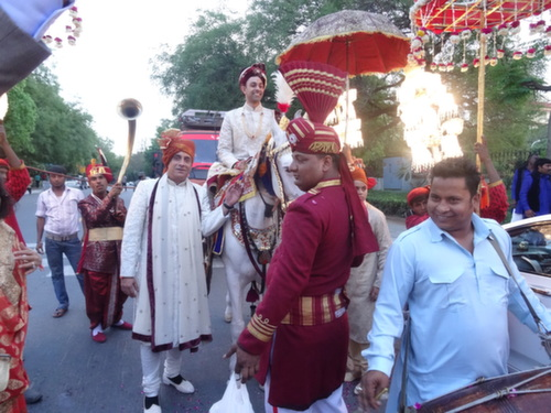 delhi groom on horse