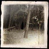 Mysterious Woman Runs Through Woods