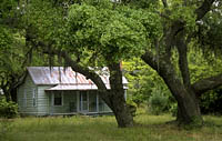 Sapelo Island Log Cabin