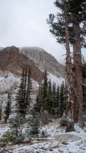 Moonshine Design Snowy Mountain Range iPhone Background