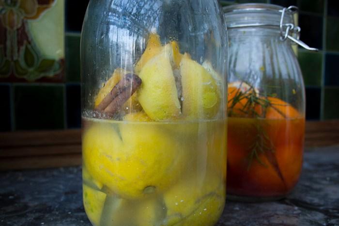 Oranges_Lemons10