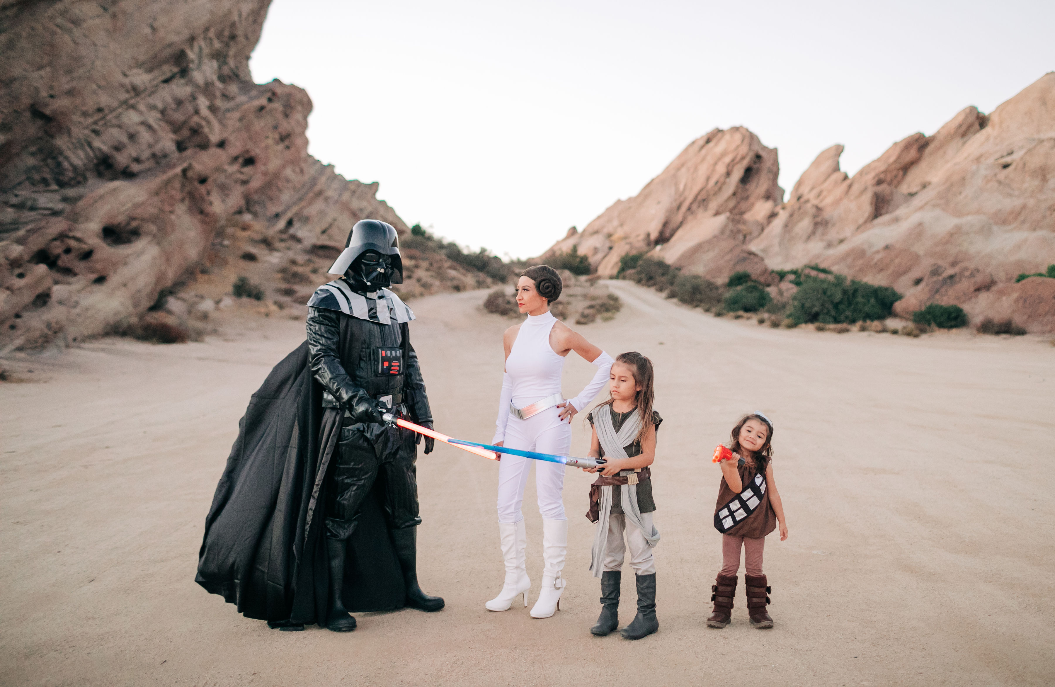 Whether you hope to have one child or six, there's no right or wrong answer when it comes to size. Halloween Costume Ideas For Families Family Costumes