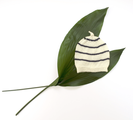 Mono Stripe with big leaves