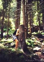 Хванала гората