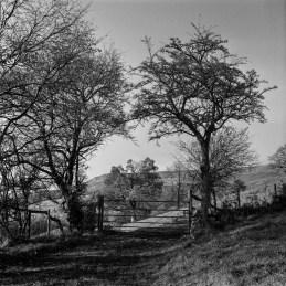 Farmland near Crick Howell.