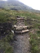 Fraser's Step Risers