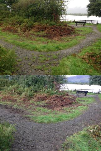 path-before-after