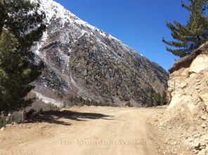 The dusty-sandy trail, rocky brown mountains, deep green foliage, and blue skies make for a refreshing journey to Chitkul. Photo: sanjay mukherjee