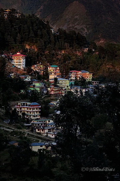 Dharamshala-McLeodganj is a traveller's delight for many different reasons. Photo: Milind Date.