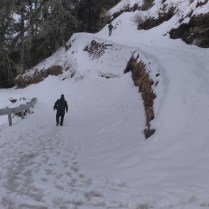 Abhishek leading the way down Hatu Peak while Sanjay ambles along peacefully at the back