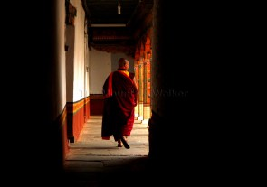Coming out into the light from one of the dark passages of the Punakha Dzong; Photo: Kaushik Naik