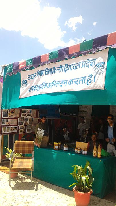 Forest produce stall; Photo: Abhinav Kaushal