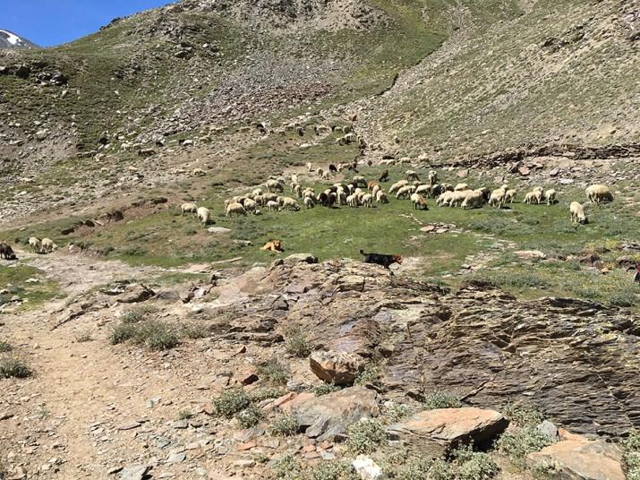 Ridge above Kunzum Pass 02
