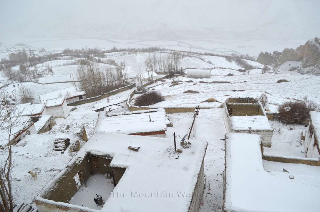 A view of the village Dhankar during the snowfall
