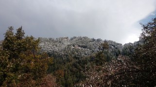 View of The Indian institute of Advance Studies, Shimla, after the snowfall. Pic courtesy : Rahul Negi
