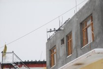 Pigeons sitting together in a flock on a roof top, as the bad weather continues along with the snowfall.