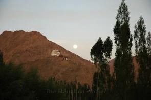Namgyal Tsemo Monastery at Leh; Photo: Abhishek Kaushal
