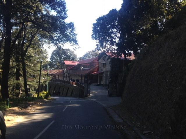 Shimla Walking 02
