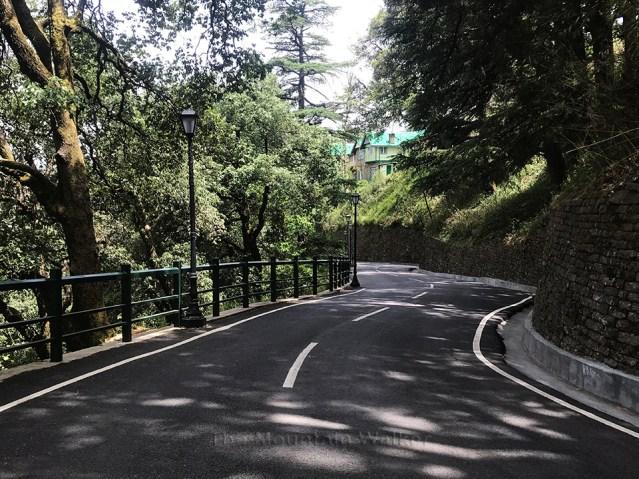 IIAS Shimla Walk 06