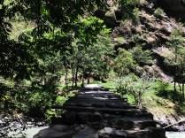 Wooden bridge ahead of Taluka used by shepherds to cross Supin River; Photo: Swarjit Samajpati
