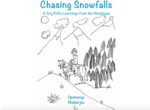 Chasing Snowfall Book Cover