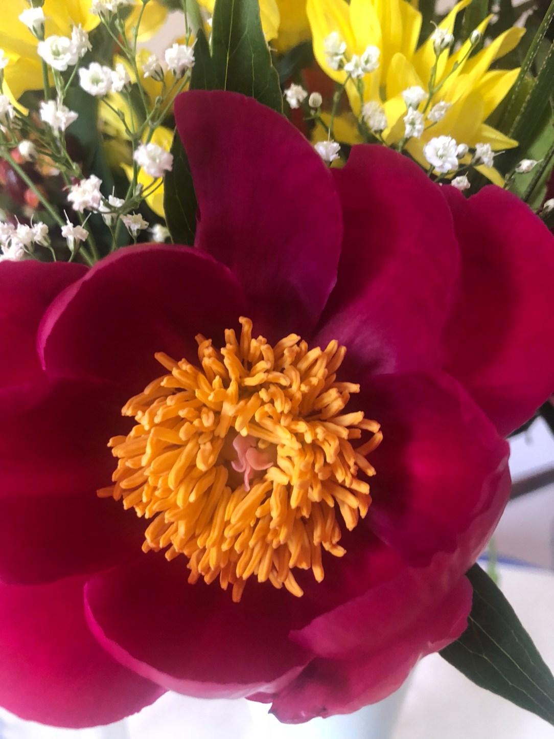 Magali Themouse, quinqua, 50 ans, soleil, sunny monday, fleurs, jaune, orage