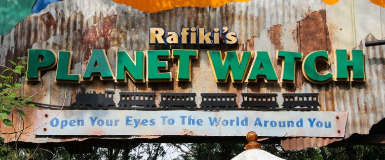 Rafiki's Planet Watch Hidden Mickeys