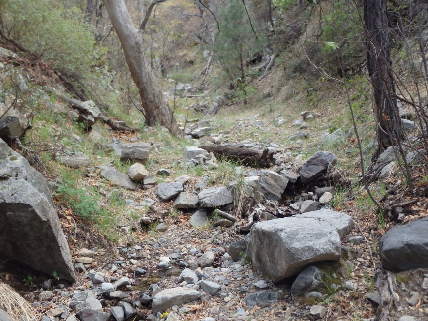 Bottom of Madera Canyon with small cascades.