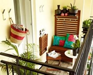 Starting a Balcony Garden food adventure