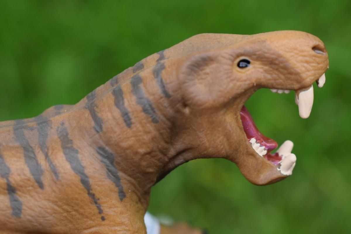 Dinogorgon Schleich Dinosaur