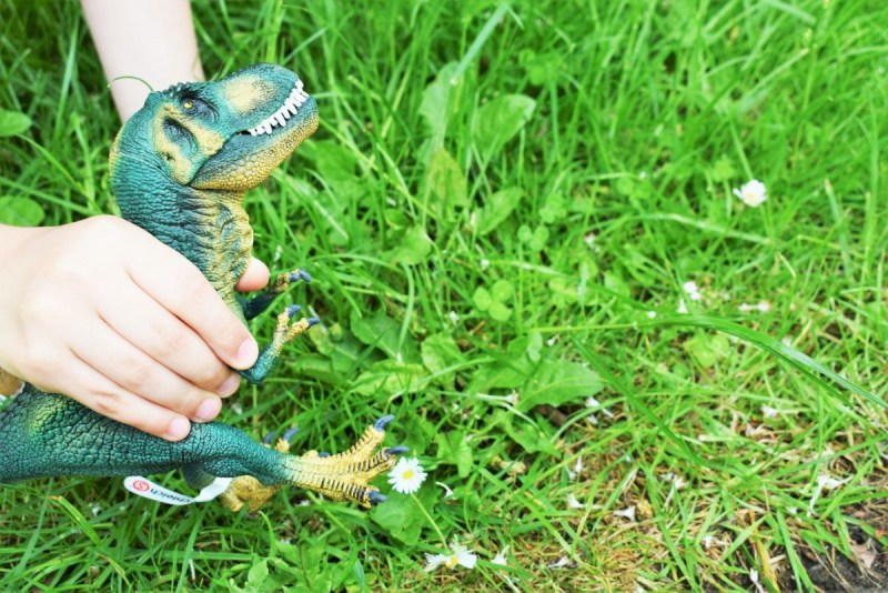 Going wild for Schleich Dinosaurs!
