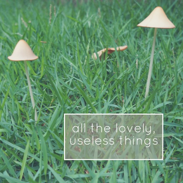 all the lovely useless things