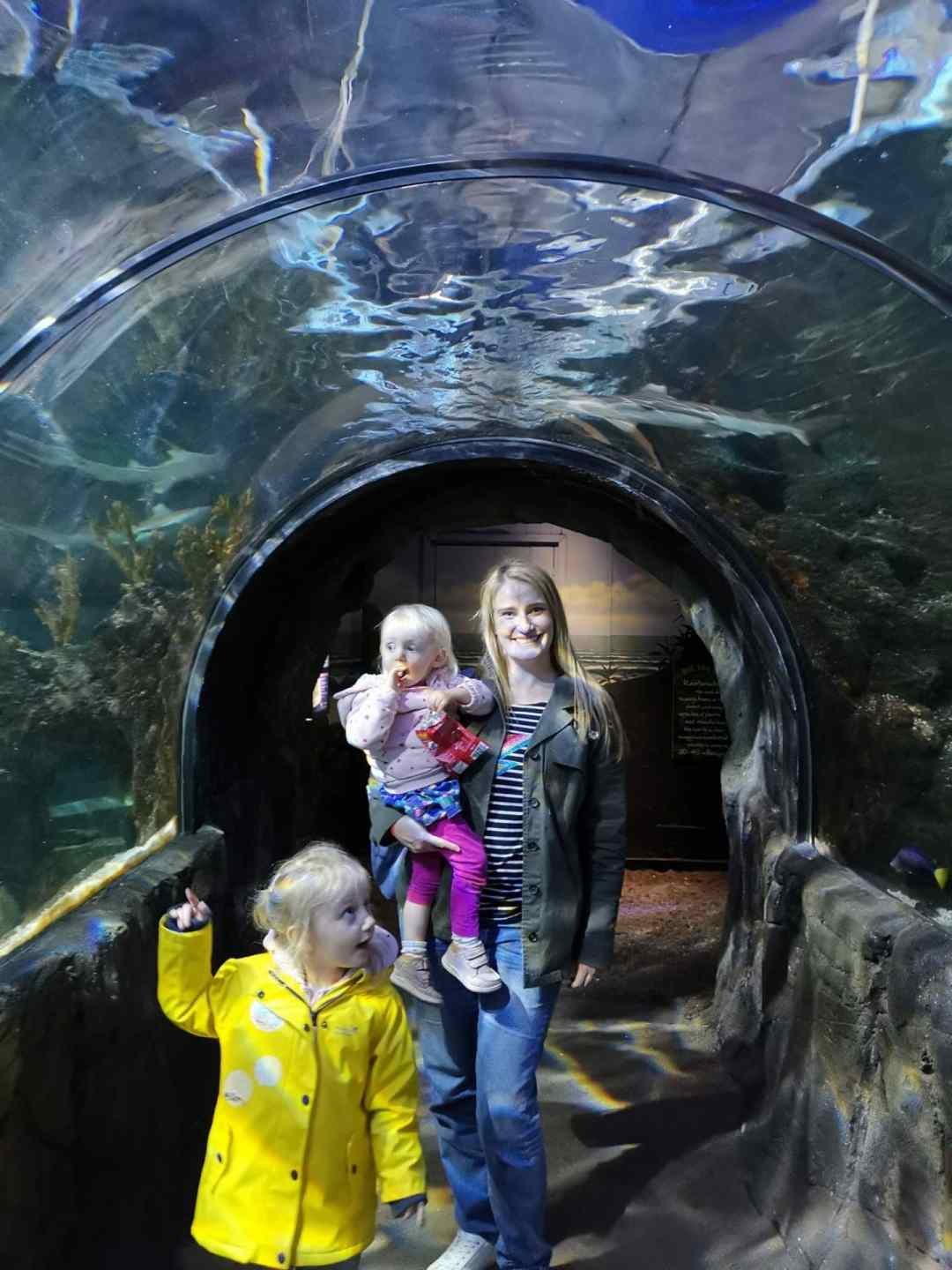 Chessington World of Adventures with toddlers at Sealife Centre