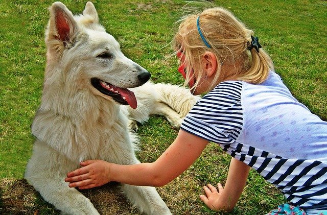 Nurturing, how pets educate children