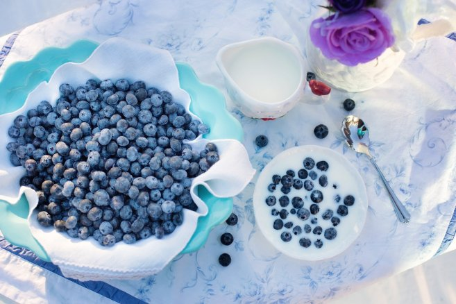 blueberries meal prep introduction