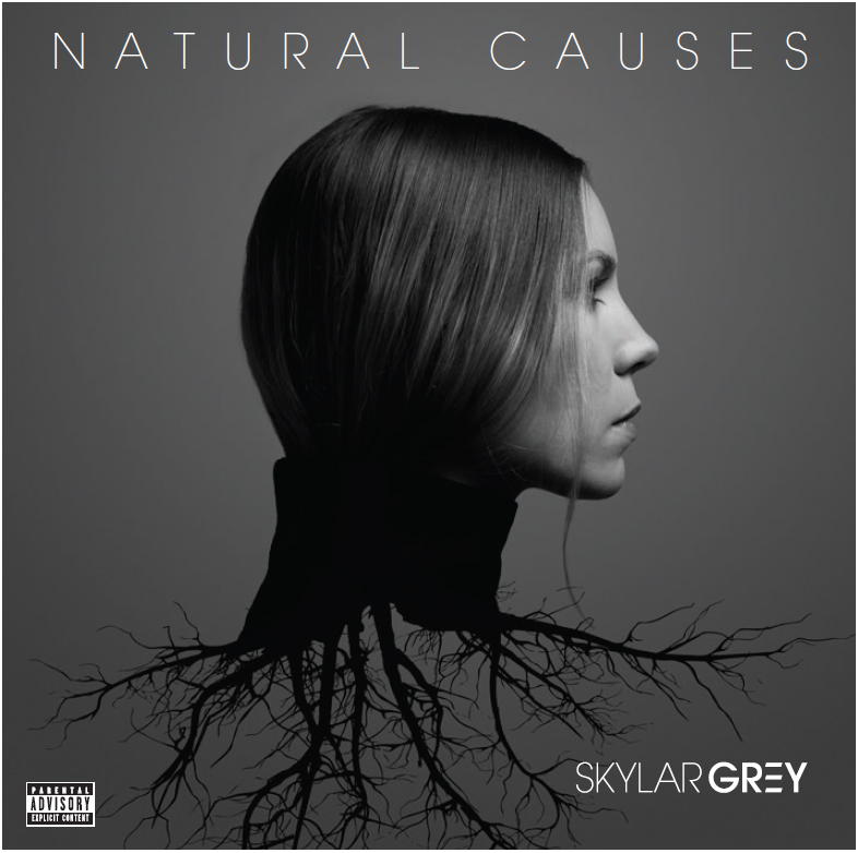 Skylar Grey, Natural Causes © Interscope