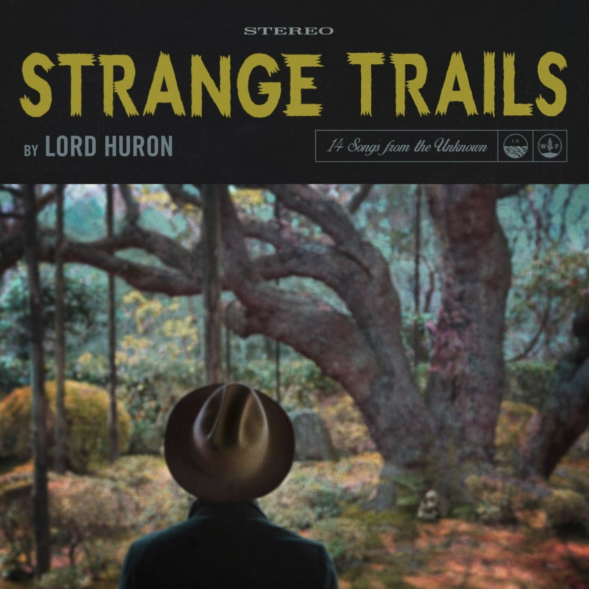 Track Review: Lord Huron, 'The Night We Met' (Strange Trails)