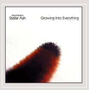 Stellar Ash, Growing Into Everything © CD Baby