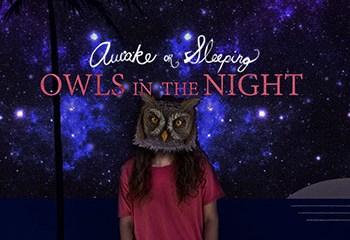 Owls in the Night by Awake or Sleeping