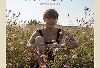 Forgive The Birds by Hayley Sabella