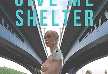 Give Me Shelter by Olivia Void and Dominique Fricot