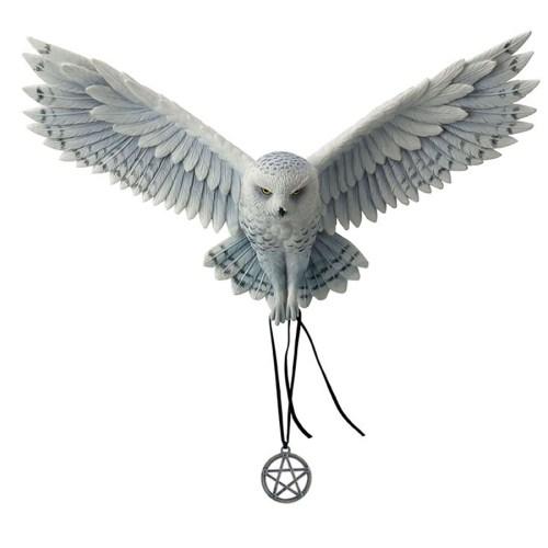 Owl-Awaken-Your-Magic
