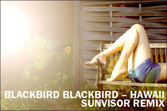 Blackbird-Blackbird-Hawaii-(Sunvisor-Remix)