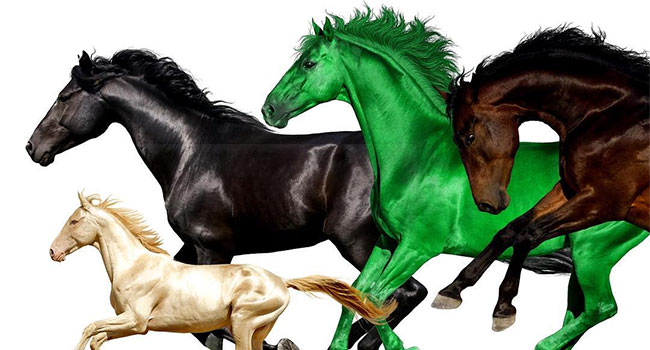 Lil Nas X, Billy Ray Cyrus - Old Town Road (Remix) featuring Young Thug & Mason Ramsey