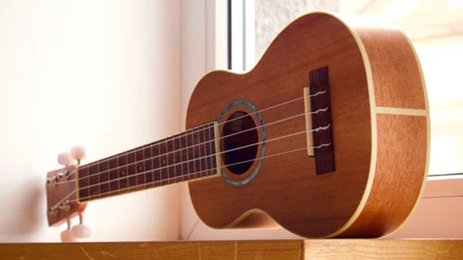 What You Should Know About the Ukulele