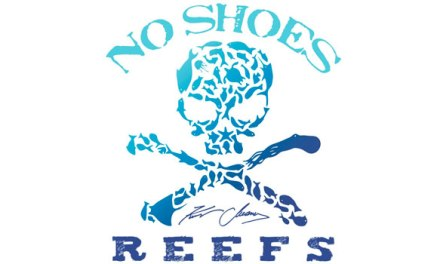Kenny Chesney's No Shoes Reefs co-launches 32 acre underwater reef park